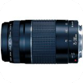 Canon EF Telephoto Lenses