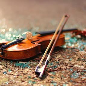 Broken heart by Nizam Akanjee - Artistic Objects Musical Instruments ( music, broken, akanjee, musical instrument, abhisaek, violin, broken glass, bokeh )