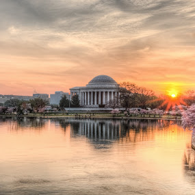 Glorious Morning by Dan Girard - City,  Street & Park  City Parks ( water, reflection, 2014, dan girard photography, architecture, cityscape, landscape, dan_girard_photography, nature, cherry bloosoms, pink, washington dc, sunrise, flowers, tidal basin )