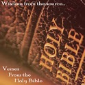 Verses from Holy Bible (Lite) icon