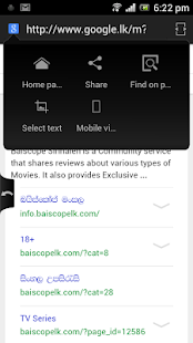 SETT Sinhala Tamil web browser - screenshot thumbnail