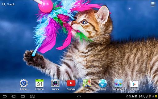 Cat Live Wallpaper 1.0.8 screenshots 10