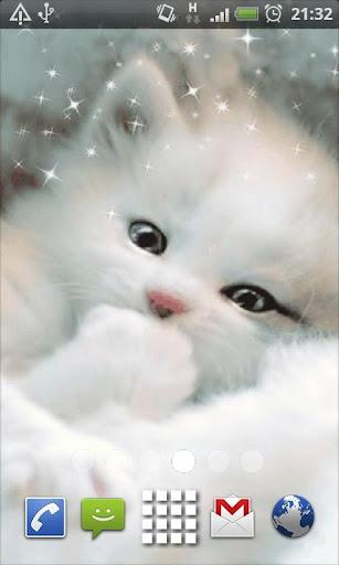 White Kitten Live Wallpaper