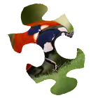 Bugs Puzzle HD icon