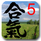 Aikido Test 5 kyu icon