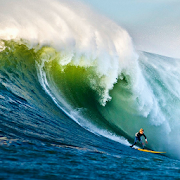Surf LW
