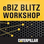 Cat eBiz Blitz 2014