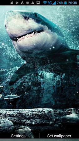Shark 3D Live Wallpaper 20 Screenshot 1440251