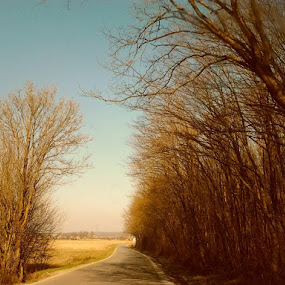 Far away by Nat Bolfan-Stosic - Uncategorized All Uncategorized ( better place, far away, bright, go away, road )