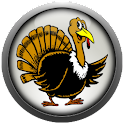 Turkey Sounds logo