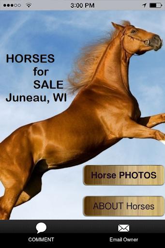 HORSE Sale - Juneau Wisconsin