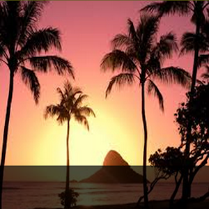 Craigslist Hawaii Cars Big Island