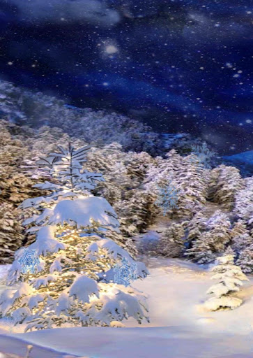 3D winter live wallpaper