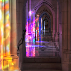Stained Walk by Terry Niec - Buildings & Architecture Places of Worship ( reflection, color, aisle, stone, walkway, national cathedral, stained glass, colorful, mood factory, vibrant, happiness, January, moods, emotions, inspiration,  )
