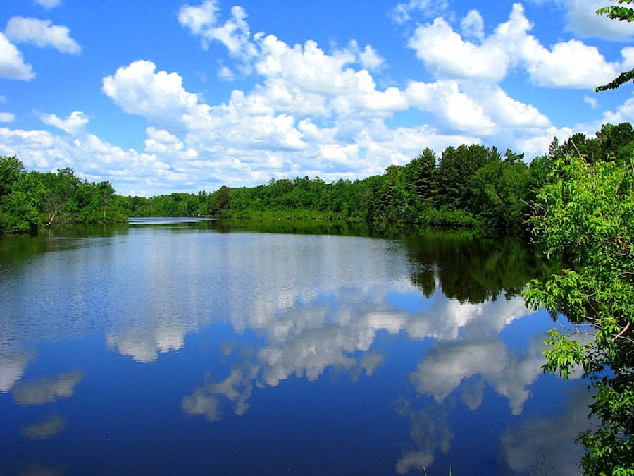 Cloud Reflection by Terry Moffatt - Landscapes Waterscapes ( clouds, water, waterscape, lakes, trees, reflections,  )