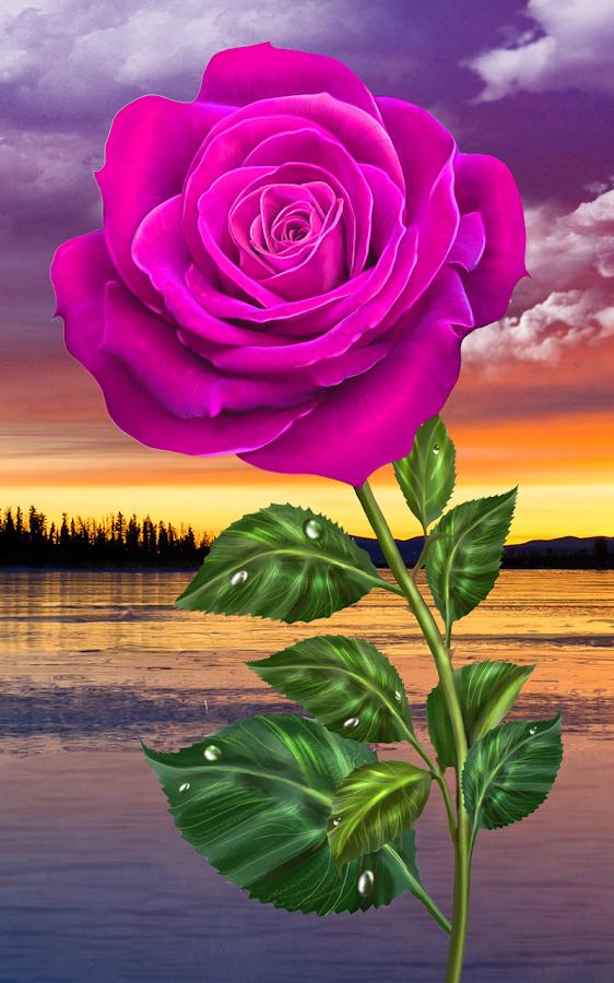 Rosa, toque mágico flores - Aplicaciones de Android en ...