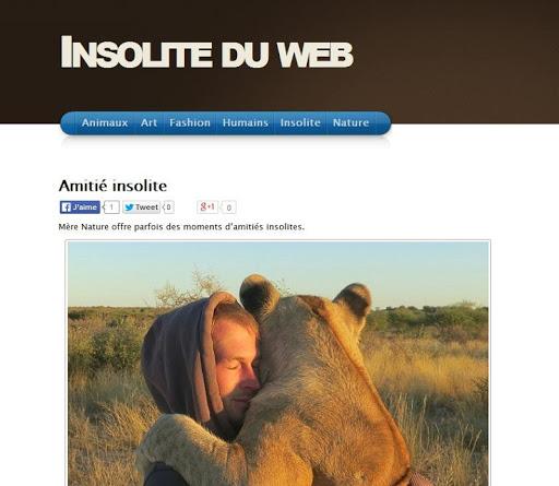 Insolite du Web