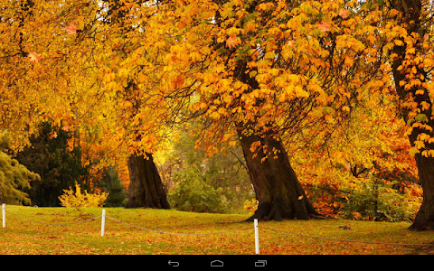 Autumn Wallpaper screenshot 9