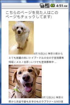 『ペットの命』犬・猫里親募集情報 -首都圏版-のおすすめ画像5