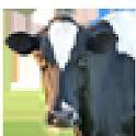 AndroLAC ( Milk cows manag.) logo