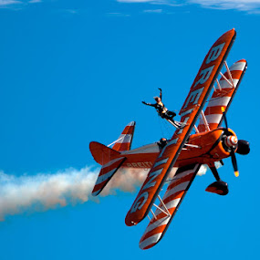 Brightling wingwalker by Murray howard-Brooks - Sports & Fitness Other Sports (  )