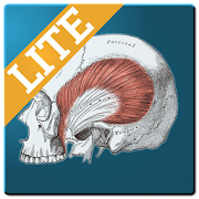 Free Muscle Memory Lite APK for Windows 8
