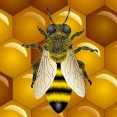 Bee Live Wallpaper