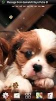 Screenshot of Puppy Dog live wallpaper