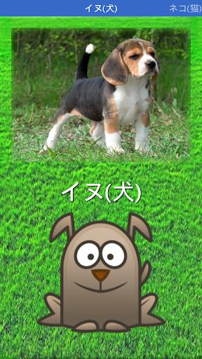 動物の画像