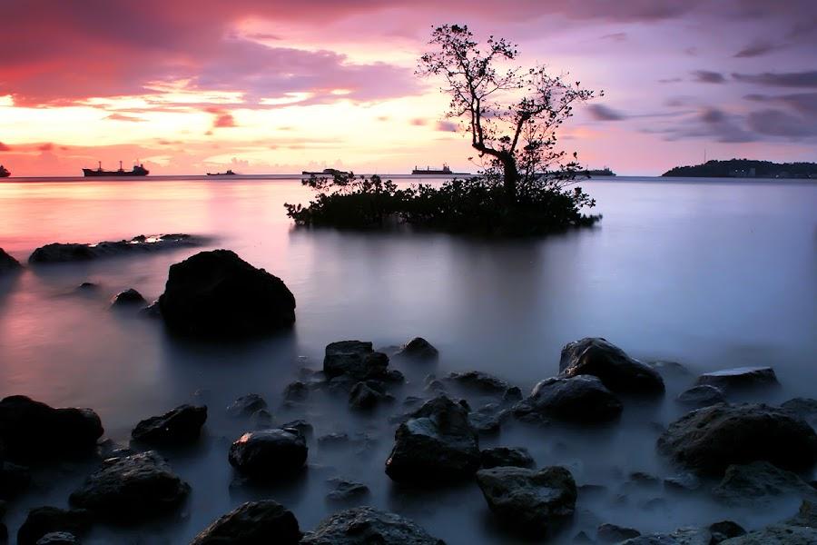 Nirwana by Maizal Chaniago - Landscapes Sunsets & Sunrises (  )