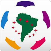 Libertadores Cup 2013 AdFree