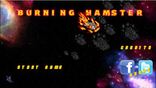 Burning Hamster