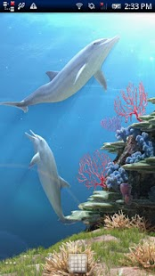 Dolphin CoralReef Trial - screenshot thumbnail