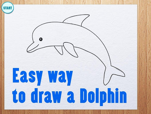 Learn How To Draw Dolphins