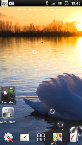 玩個人化App|白鳥 ライブ壁紙免費|APP試玩