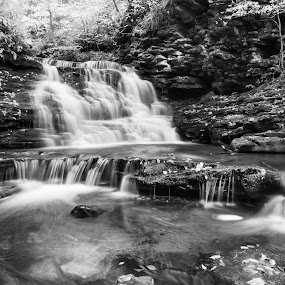 Above Mohican Falls, 2014.10.10 by Aaron Campbell - Black & White Landscapes ( luzerne county, b&w, black and white, ricetts glen, rgsp, leaves, hiking, nature, autumn, foliage, e pz 16-50mm f/3.5-5.6 oss, kit lens, state park, tones, fairmount township, ganoga glen, falls trail, 2014, textures, thursday, nik collection, silver efex pro, a6000, cascades, pennsylvania, nepa, mirrorless, ilce-6000, sony, outdoors, fall, 16th, sony alpha 6000, october )