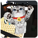 Cute cat simulator 3D icon