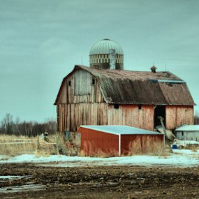All She Needs Is A Little TLC. by Michael Priest - Novices Only Landscapes ( farm, wisconsin, barn )