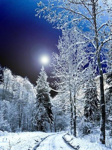ฤดูหนาว น้ำแข็งวอลล์เปเปอร์