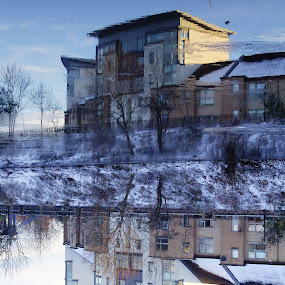 Mess with your mind by Shona McQuilken - Buildings & Architecture Other Exteriors ( reflection, winter, clyde, ice, snow, glasgow, flats, upside down, river,  )