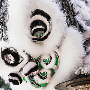 CNY_2014 Lion Dance_Head.jpg