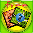 Carmaux Zombie Boardgame Free icon