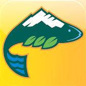 Ski Whitefish