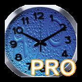 H2O Alarm Pro