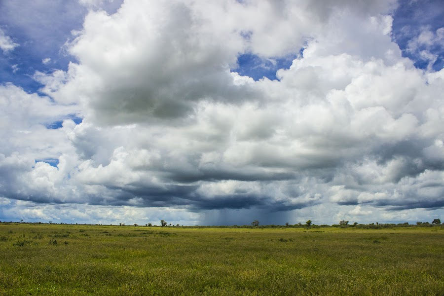 Clouds opening up by Arun Prasanna - Landscapes Cloud Formations ( #rain #distant clouds #kalahari #sky )