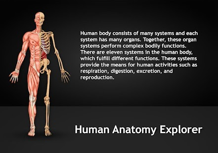 Human Anatomy Explorer screenshot