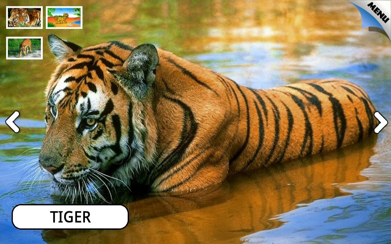 kids animals farm and zoo free screenshot - Animals Pictures For Kids Free Download