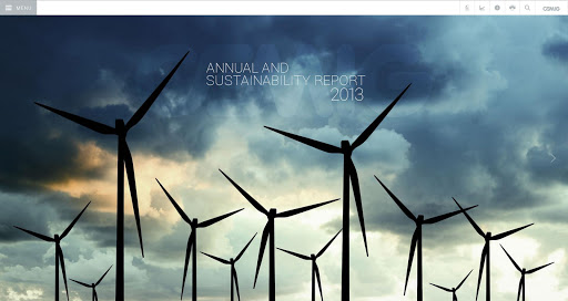 2013 Cemig Report