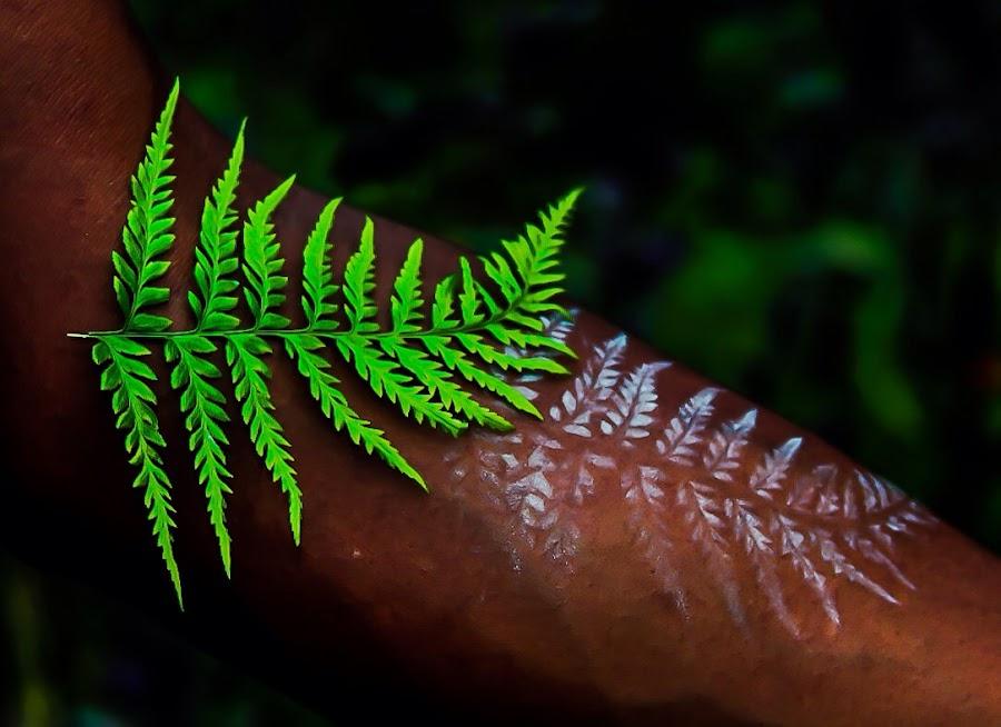 Fern Tattoo  by Cecilia Laird - Digital Art Things ( fern leaf, fern tattoo, natural tattoo, forearm tattoo, fern leaf tattoo on forearm, tattoo, temporary tattoo )