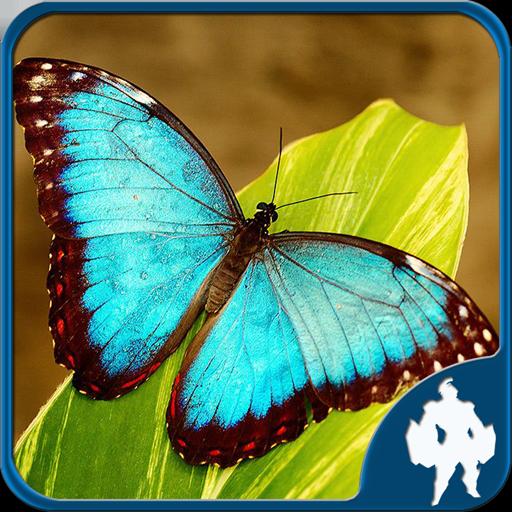 蝴蝶拼圖 解謎 LOGO-玩APPs